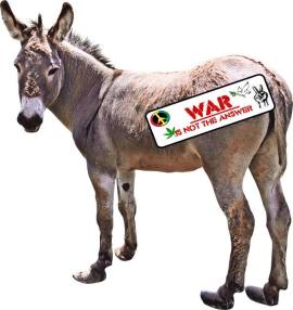 jesus movement - donkey with bumper sticker