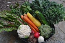 21 Day Whole Food Cleanse