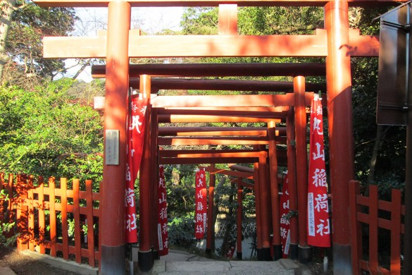 Tsurugaoka-Hachiman-gu-Kamakura-Giappone-Torii-japan