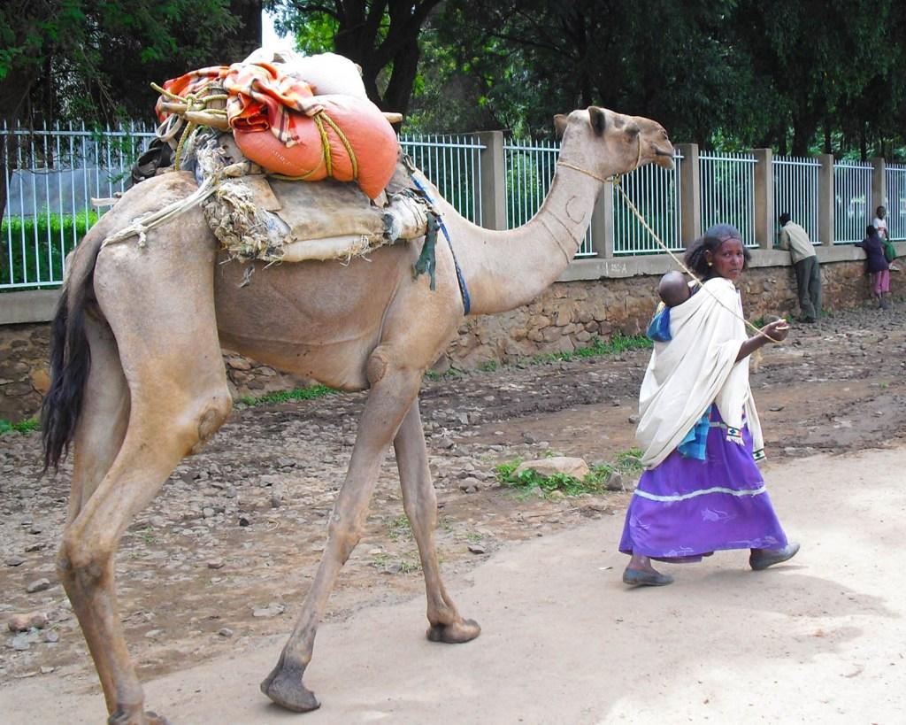 Axum-Tigray-Ethiopia-Etiopia-Africa