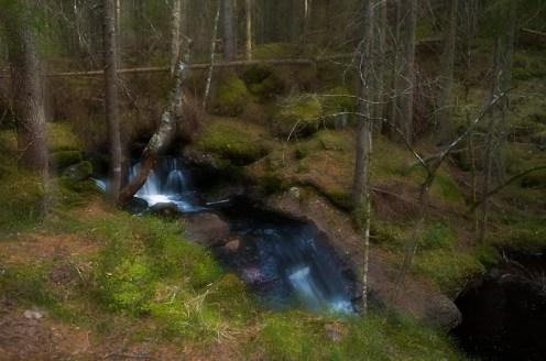 Skogsbäck i en av Kilsbergens trolldalar