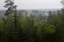 Utsikten vid Kilsbergens högsta punkt