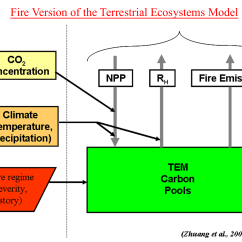 Water Ecosystem Diagram 2002 Ford Expedition Fuse Panel Ecosystems And Biogeochemical Models Department Of Earth