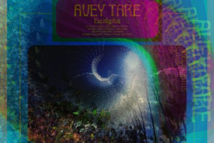 Avey Tare – Eucalyptus Review