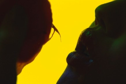 "Video Science Theater: Animal Collective – ""Applesauce"""