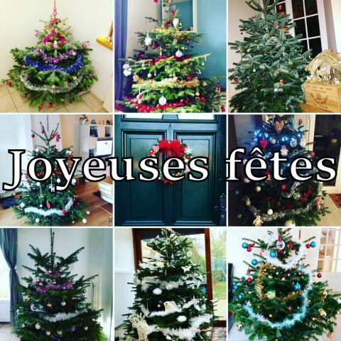 Joyeuses fêtes et bonne année 2017