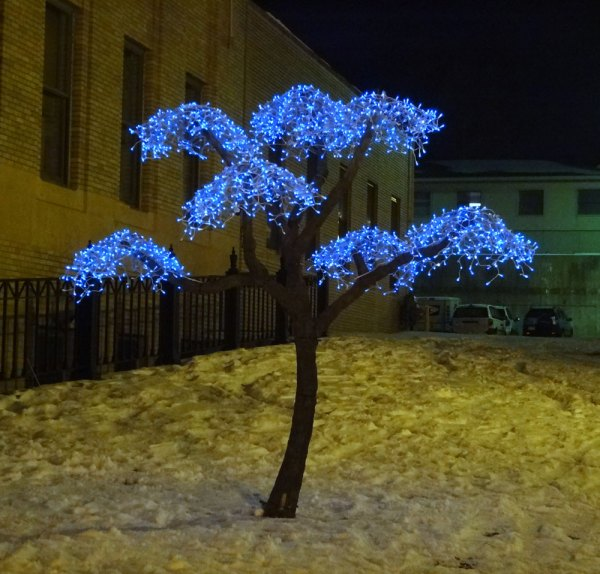 Living Tree Art Earl Senchuk