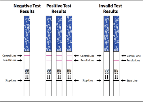Pregnancy Test Results Comparison Chart