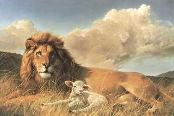Image result for the lamb shall lay down with the lion