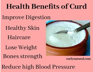 What are Health Benefits of Curd and How to make Curd?