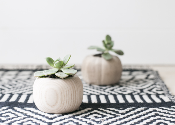 diy mini wooden succulent vase