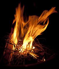 small campfire burning