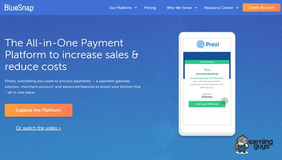 BlueSnap Payment Platform