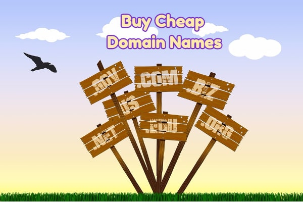 Best Websites to Buy Cheap Domain Names