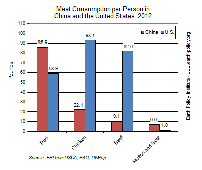 Meat Consumption per Person in China and the United States, 2012