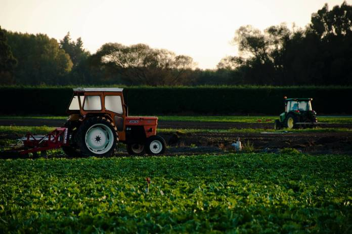 Why Sustainable Agriculture Is Important?