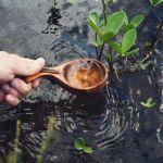 Water Wooden Spoon
