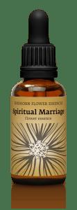 fh spiritualmarriage