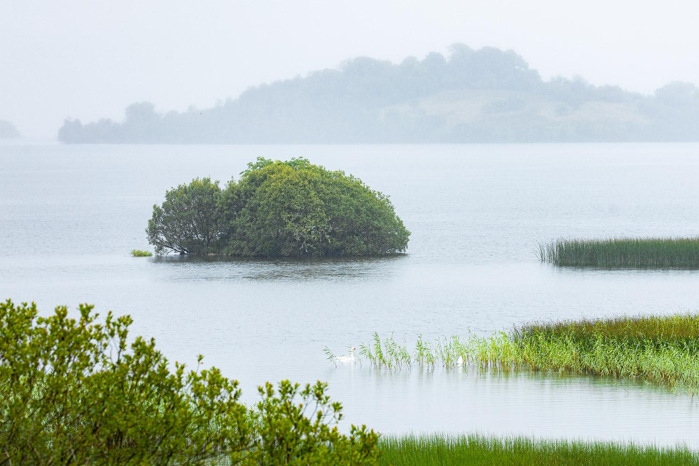 Lough Arrow in Ireland