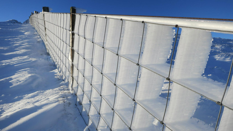 hard-rime-ice-on-a-fence