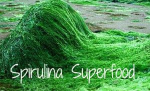 Health Benefits of Spirulina:  Spirulina Smoothie