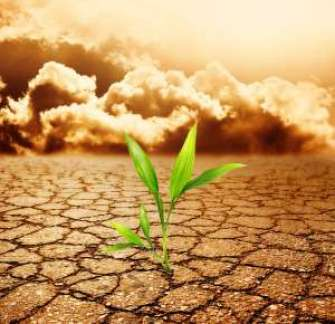 Climate-Smart-Agriculture