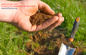 The-eight-Importent-Steps-to-Take-Care-of-Soil