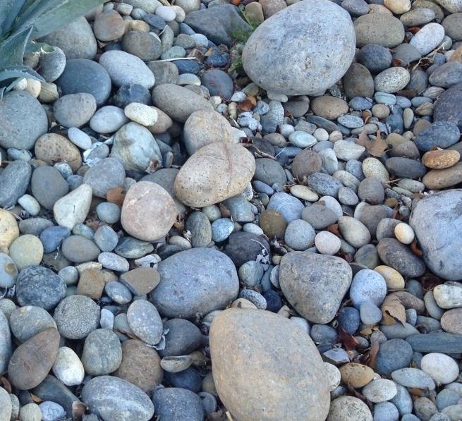Decorative Rocks Sale Near Me