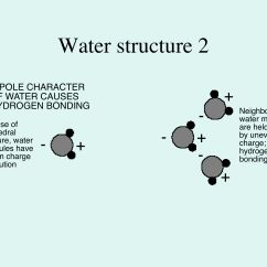Water Molecule Diagram Eyeshadow Application Structure Of