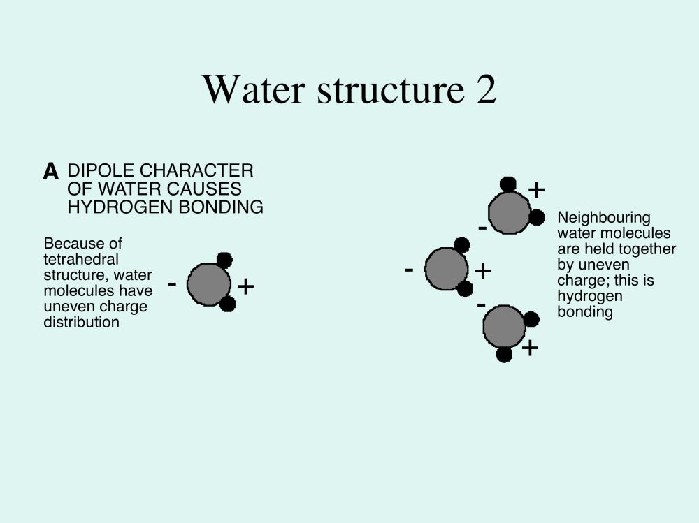 medium resolution of 3b3 e waterstructurefig2a jpg