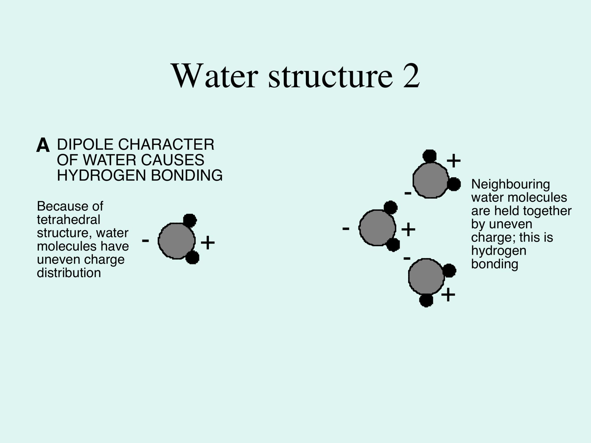 hight resolution of 3b3 e waterstructurefig2a jpg