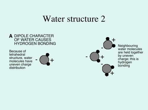 small resolution of 3b3 e waterstructurefig2a jpg
