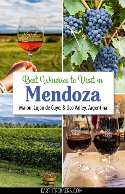 Mendoza Argentina Wine Regions