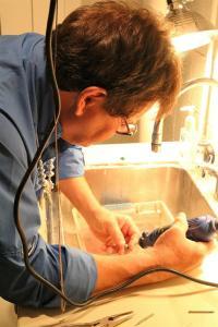 Jack drilling turquoise stones