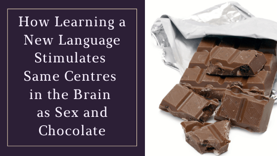 How Learning a New Language Stimulates Same Centres in the Brain as Sex and Chocolate