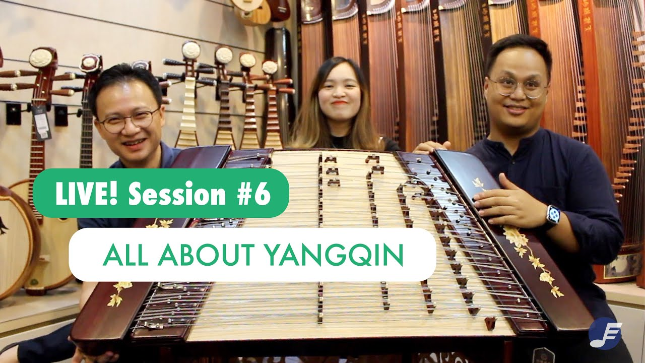 all about yangqin