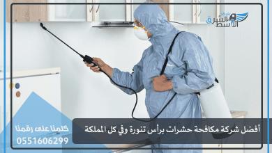 Photo of أفضل شركة مكافحة حشرات برأس تنورة وفي كل المملكة