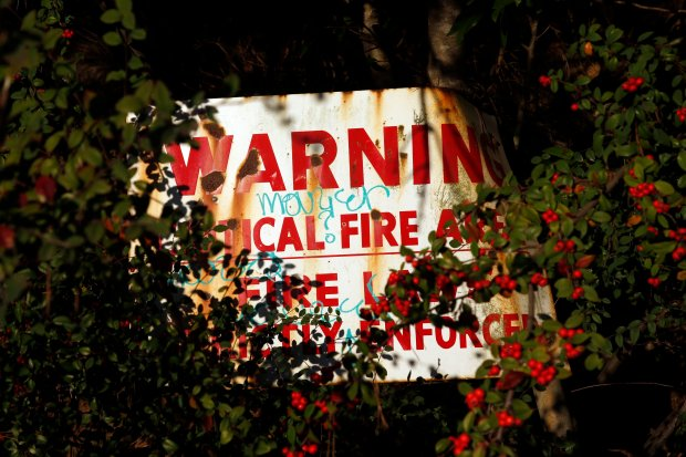 A sign warning of critical fire area in the 1991 Oakland Hills fire zone is obscured to the point of unreadability by overgrown brush at the intersection of Broadway Terrace and Skyline Boulevard in the Oakland Hills, Tuesday, Dec. 120, 2016, in Oakland, Calif. (Karl Mondon/Bay Area News Group)