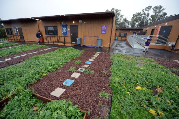 An area of landscaping that has become a topic of disagreement is seen at Rocketship Futuro Academy in Concord, Calif., on Tuesday, Jan. 10, 2017. Futuro, a charter school, is located adjacent to Ayers Elementary School. (Kristopher Skinner/Bay Area News Group)