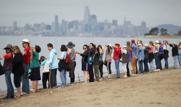 Some of the hundreds of people that participated in the Hands Across Alameda solidarity event hold hands along the beach near Shoreline Drive on Earth Day in Alameda on April 22, 2017. Organized by Alameda Peeps and the City of Alameda residents were invited to help form a human chain along the beach to show unity and support for the Island's diversity. (Anda Chu/Staff archives)