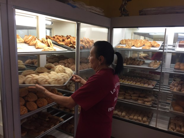Rosa Suarez places baked conchas on a display rack at Panaderia La Michoacana in Oakley. Business has been slow ever since construction started on Main Street in front of their business and the Suarez family hopes customers don't forget about them over the next six months. (Aaron Davis/Staff)