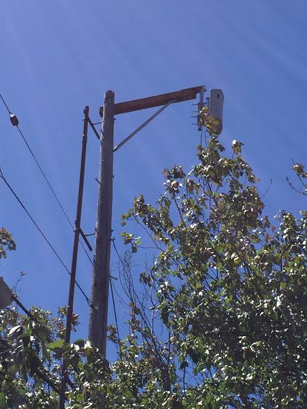 This cell antenna is secured to a utility power pole at Glen Eden and Piedmont avenues in Oakland.(Courtesy of Pierce Macdonald-Powell/City of Piedmont)