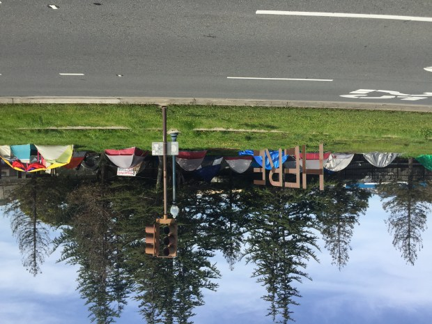 A tent camp on a grassy strip between Adeline Street and the BART tracks in South Berkeley is seen on March 9, 2017 (Tom Lochner)
