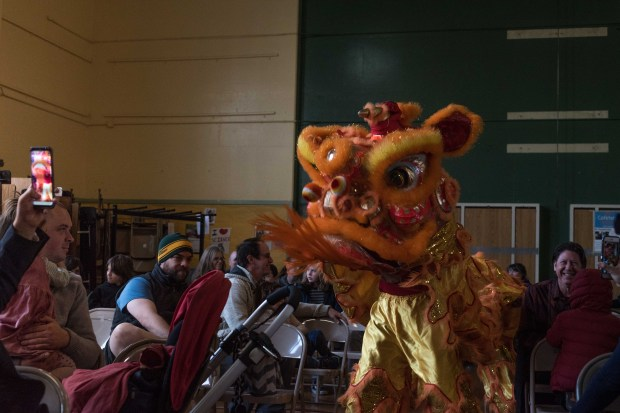 A traditional Chinese lion dance is performed by the Buk Sing Kung Fu Academy at the Laurel Annual Local Heroes Celebration in Oakland, CA, February 24th, 2018. (Photo by Aubrielle Hvolboll)