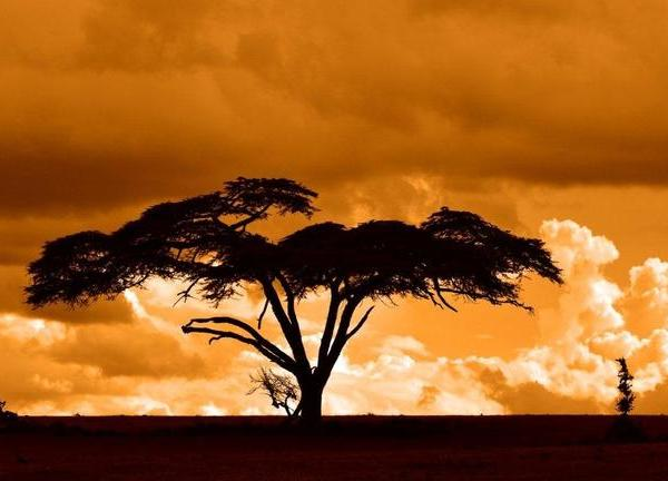 Masai Mara National Reserve Sunset