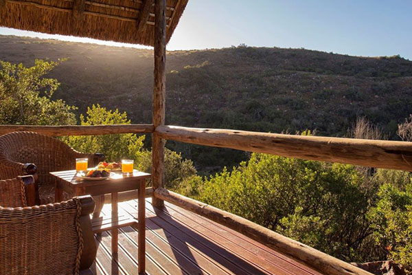 14 Day Garden Route Package Lalibela Tree Tops Safari Lodge 2