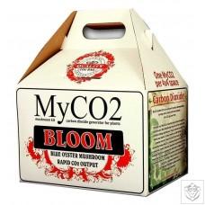 My CO2 - Bloom