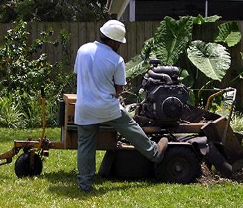 Arborist Grinds a Stump of a Tree