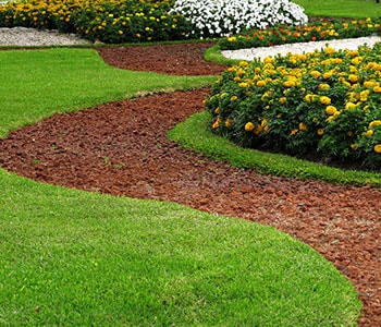 Park Design with Stone Pathways in Grass with Flower Beds