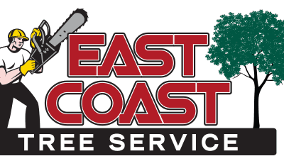 Welcome to East Coast Tree Service